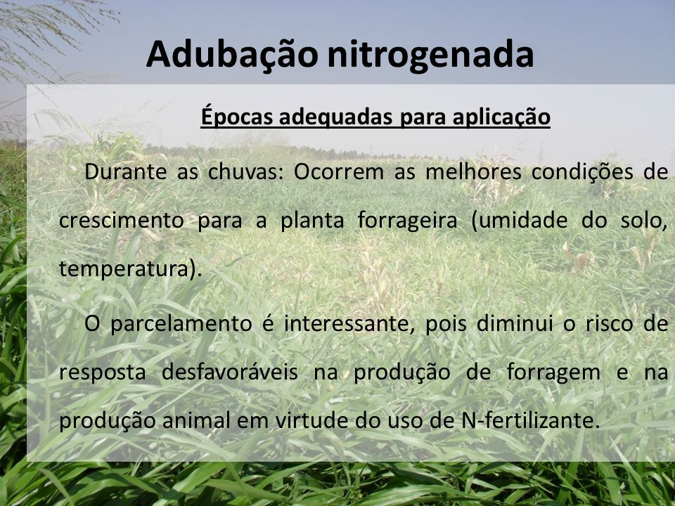 Épocas adequadas para aplicação Durante as chuvas: Ocorrem as melhores condições de crescimento para a planta forrageira (umidade do solo, temperatura
