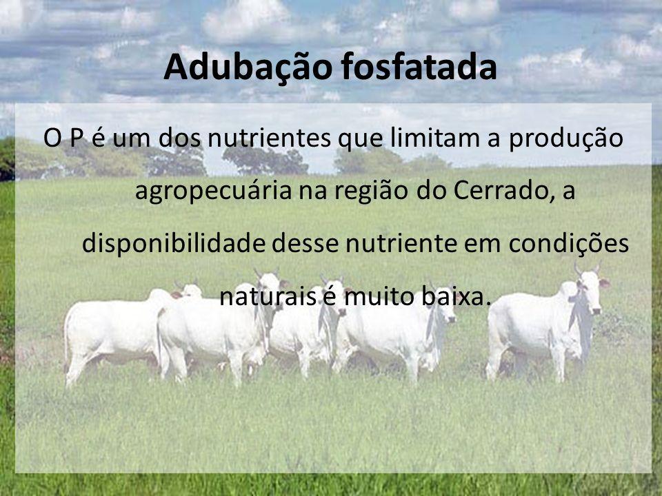 O P é um dos nutrientes que limitam a produção agropecuária na região do Cerrado, a disponibilidade desse nutriente em condições naturais é muito baix