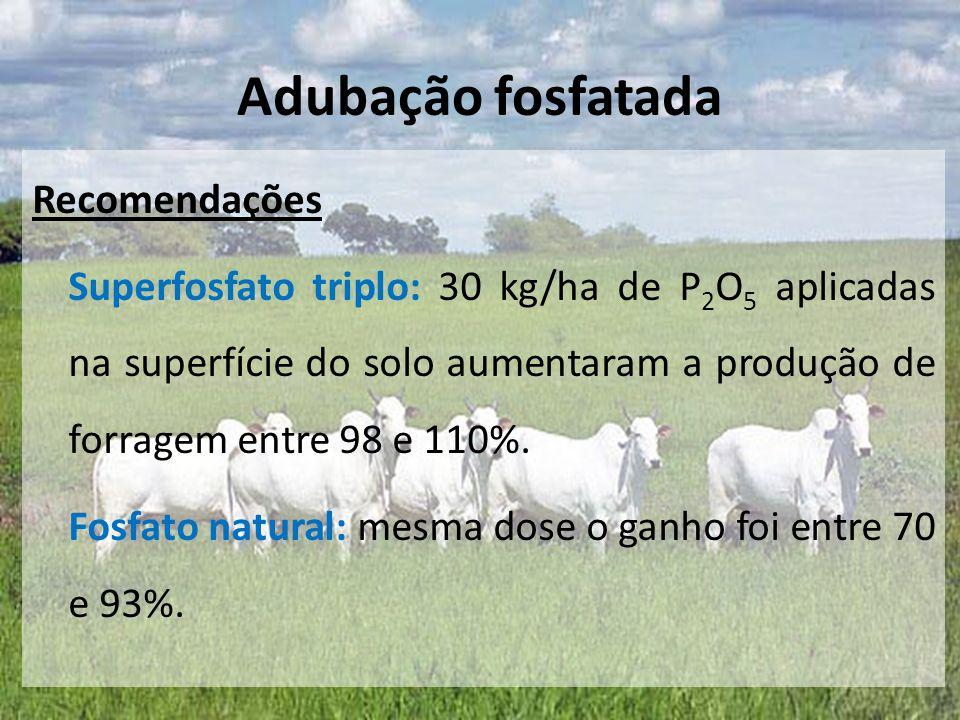 Recomendações Superfosfato triplo: 30 kg/ha de P 2 O 5 aplicadas na superfície do solo aumentaram a produção de forragem entre 98 e 110%. Fosfato natu