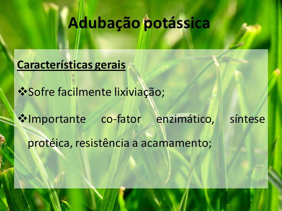 Características gerais  Sofre facilmente lixiviação;  Importante co-fator enzimático, síntese protéica, resistência a acamamento; Adubação potássica