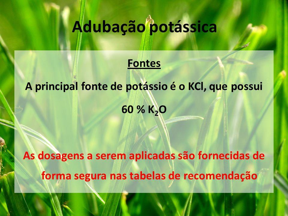 Fontes A principal fonte de potássio é o KCl, que possui 60 % K 2 O As dosagens a serem aplicadas são fornecidas de forma segura nas tabelas de recome