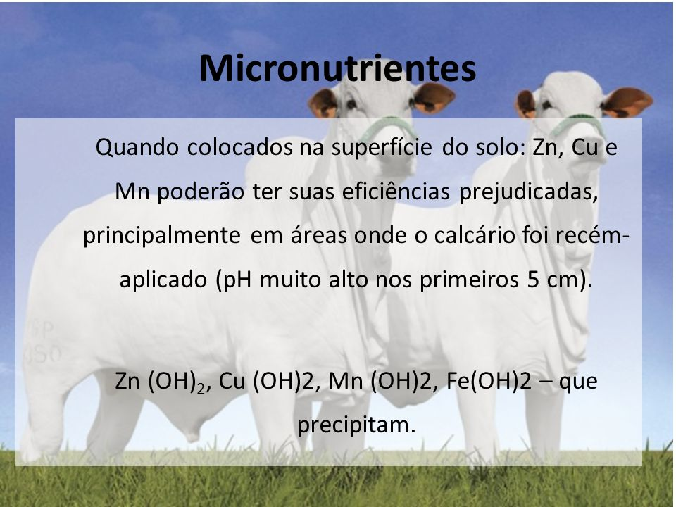 Micronutrientes Quando colocados na superfície do solo: Zn, Cu e Mn poderão ter suas eficiências prejudicadas, principalmente em áreas onde o calcário