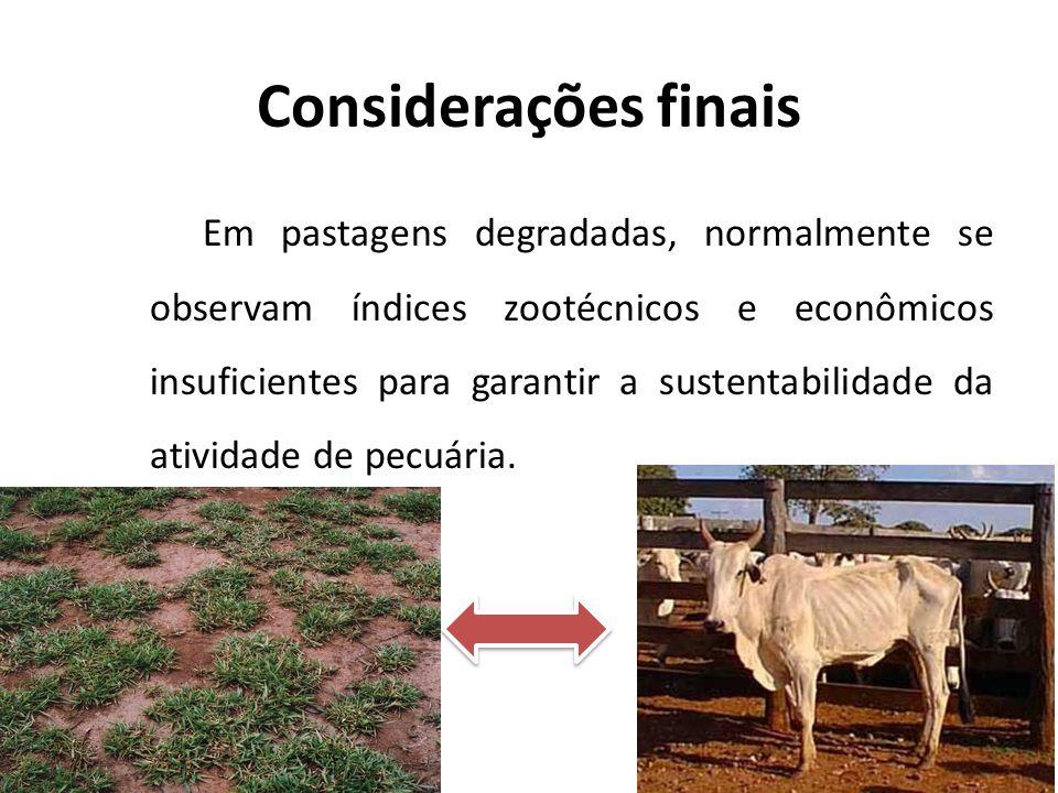 Considerações finais Em pastagens degradadas, normalmente se observam índices zootécnicos e econômicos insuficientes para garantir a sustentabilidade