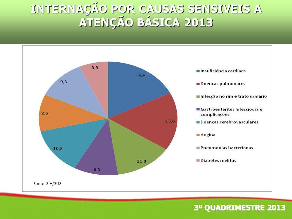 3º QUADRIMESTRE 2013 INTERNAÇÃO POR CAUSAS SENSIVEIS A ATENÇÃO BÁSICA 2013 Fonte: SIH/SUS