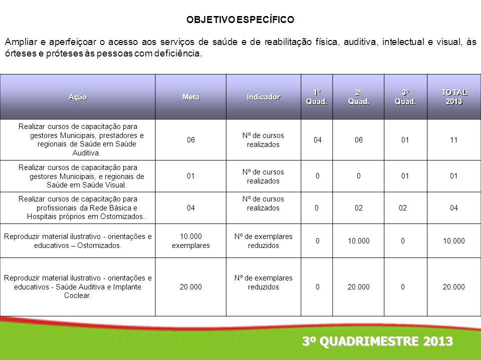 AçãoMetaIndicador1ºQuad.2ºQuad.3ºQuad.TOTAL2013 Realizar cursos de capacitação para gestores Municipais, prestadores e regionais de Saúde em Saúde Aud