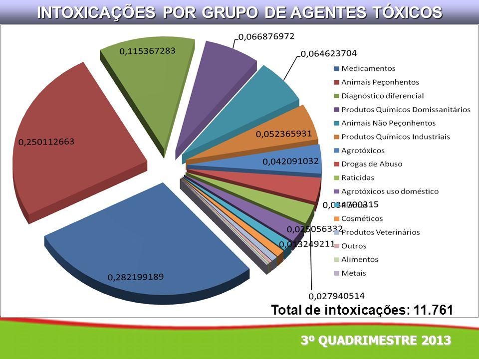 INTOXICAÇÕES POR GRUPO DE AGENTES TÓXICOS Total de intoxicações: 11.761 3º QUADRIMESTRE 2013