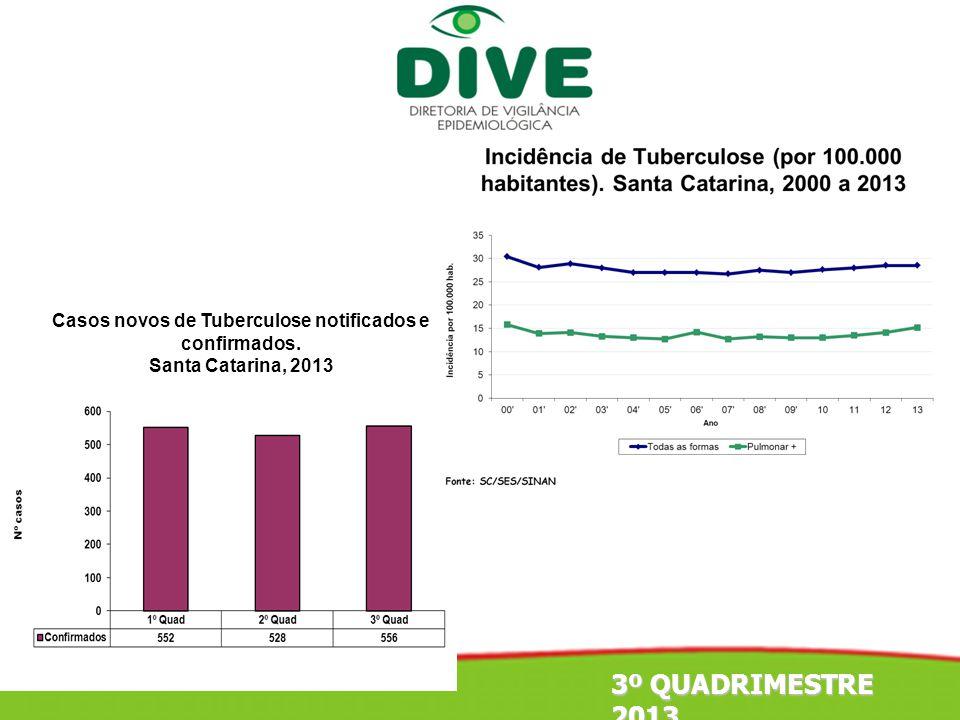 Casos novos de Tuberculose notificados e confirmados. Santa Catarina, 2013