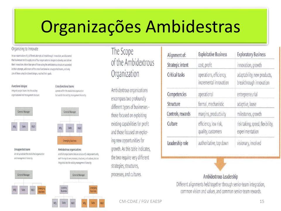 Organizações Ambidestras 15CM-CDAE / FGV EAESP
