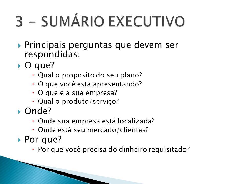  Principais perguntas que devem ser respondidas:  O que?  Qual o proposito do seu plano?  O que você está apresentando?  O que é a sua empresa? 