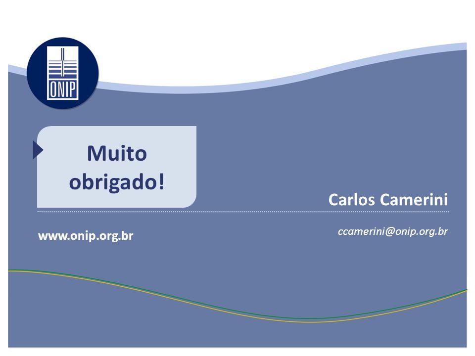 Muito obrigado! www.onip.org.br Carlos Camerini ccamerini@onip.org.br