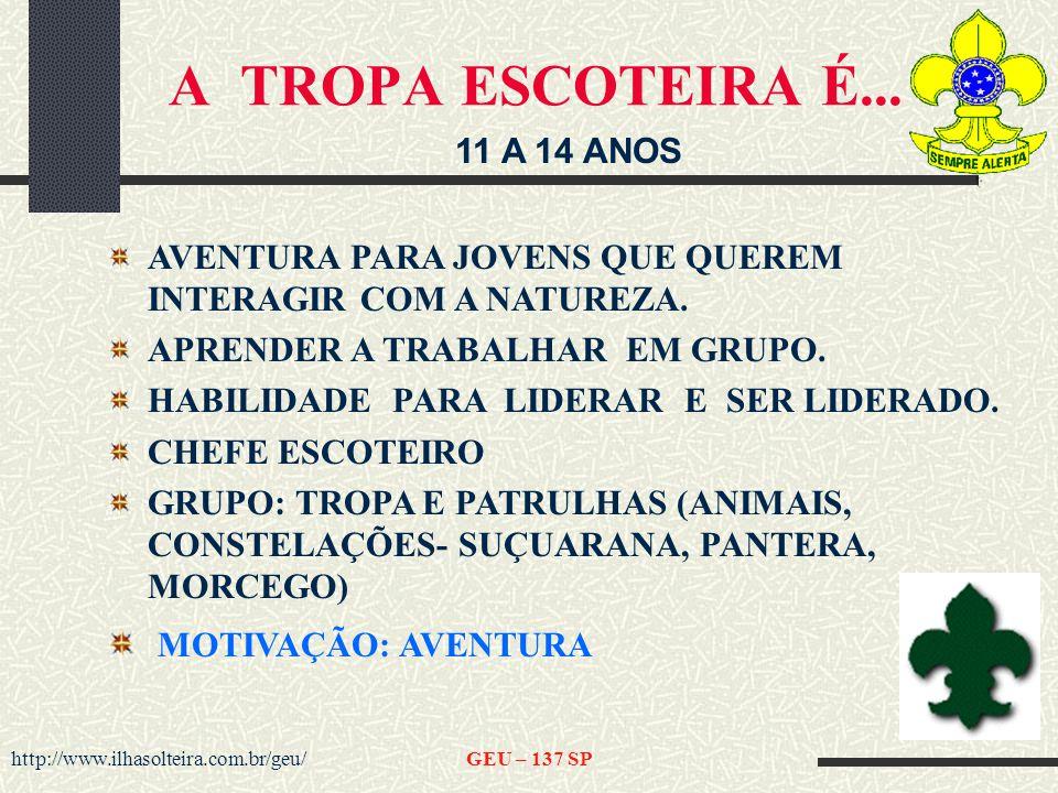 http://www.ilhasolteira.com.br/geu/GEU – 137 SP A TROPA ESCOTEIRA É...