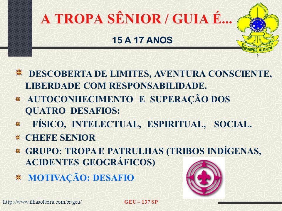 http://www.ilhasolteira.com.br/geu/GEU – 137 SP A TROPA SÊNIOR / GUIA É...