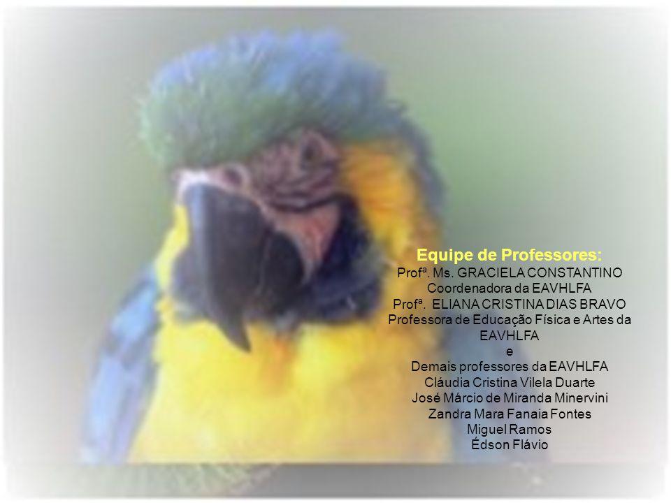 Equipe de Professores: Profª. Ms. GRACIELA CONSTANTINO Coordenadora da EAVHLFA Profª. ELIANA CRISTINA DIAS BRAVO Professora de Educação Física e Artes