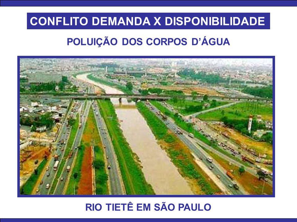 RIO TIETÊ EM SÃO PAULO POLUIÇÃO DOS CORPOS D'ÁGUA CONFLITO DEMANDA X DISPONIBILIDADE
