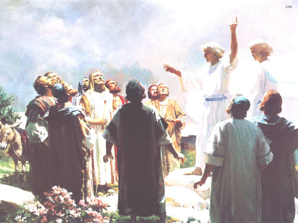 + Contradições: quando? Logo ou 40 dias depois? onde? Em Jerusalém ou na Galiléia? + Ressurreição, Ascensão, Pentecostes: 3 Momentos distintos? ou mom