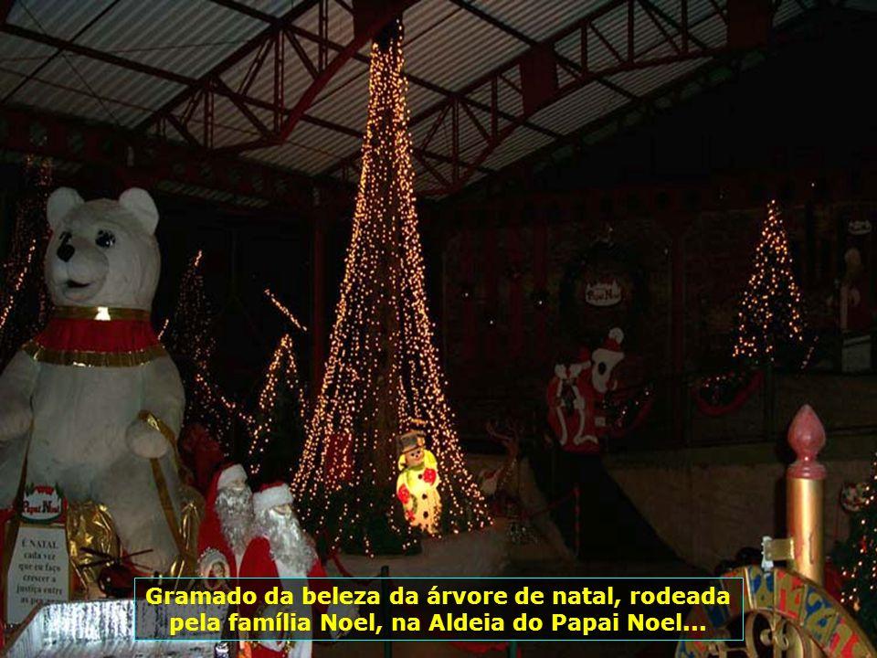 Aqui o Papai Noel em sua aldeia, brindando os visitantes com as boas vindas e festejando o Natal que se aproxima...