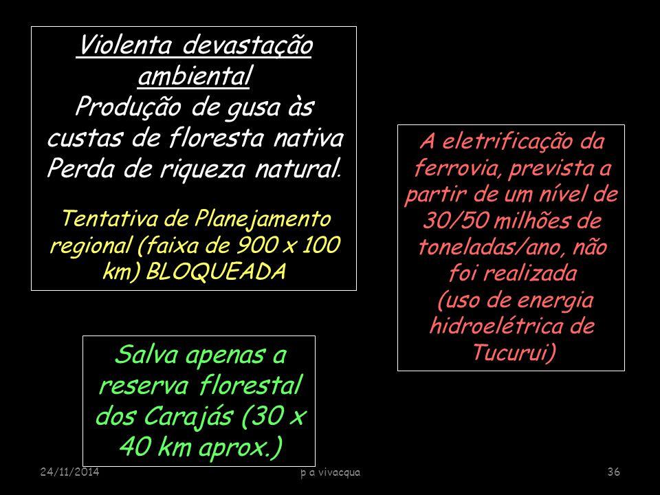 Violenta devastação ambiental Produção de gusa às custas de floresta nativa Perda de riqueza natural.