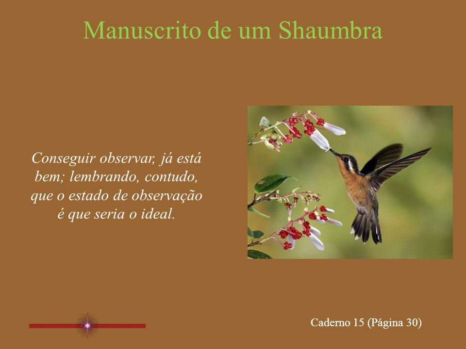 Manuscrito de um Shaumbra Estar no Agora, já está bem; lembrando, contudo, que Ser o Agora é que é o ponto a se chegar.