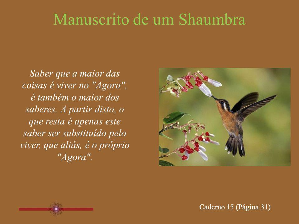 Manuscrito de um Shaumbra Conseguir observar, já está bem; lembrando, contudo, que o estado de observação é que seria o ideal.