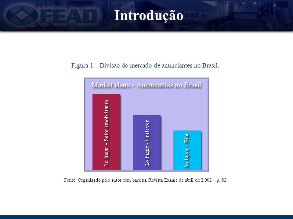 Introdução Figura 1 – Divisão do mercado de anunciantes no Brasil. Fonte: Organizado pelo autor com base na Revista Exame de abril de 2.002 – p. 82.