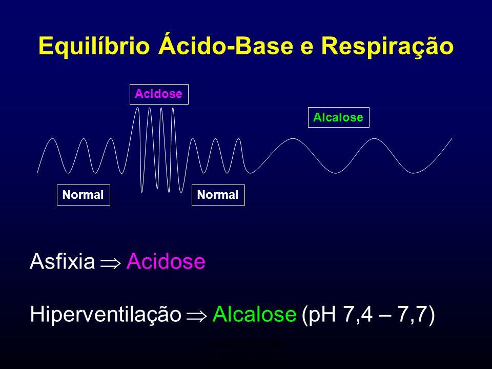 FMUC 2007/2008 Bioquímica I Asfixia  Acidose Hiperventilação  Alcalose (pH 7,4 – 7,7) Equilíbrio Ácido-Base e Respiração Normal Acidose Alcalose