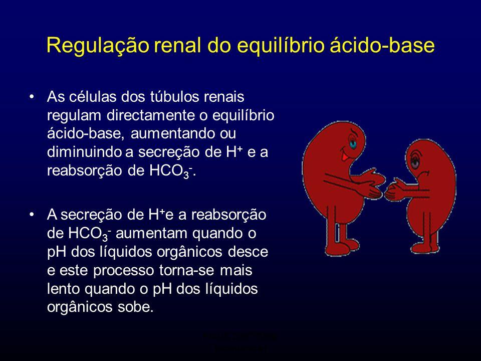 FMUC 2007/2008 Bioquímica I Regulação renal do equilíbrio ácido-base As células dos túbulos renais regulam directamente o equilíbrio ácido-base, aumen
