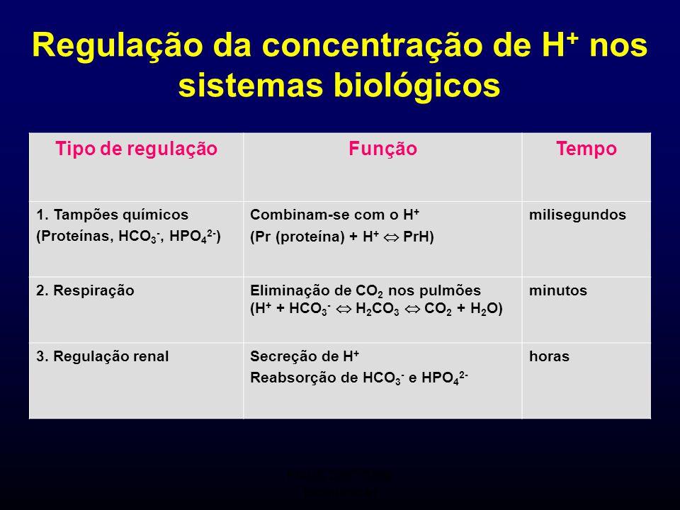 FMUC 2007/2008 Bioquímica I Regulação da concentração de H + nos sistemas biológicos Tipo de regulaçãoFunçãoTempo 1. Tampões químicos (Proteínas, HCO