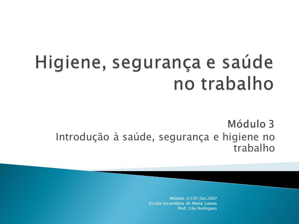 Módulo 3 Introdução à saúde, segurança e higiene no trabalho Módulo 3/CEF/Set.2007 Escola Secundária de Maria Lamas Prof. Céu Rodrigues