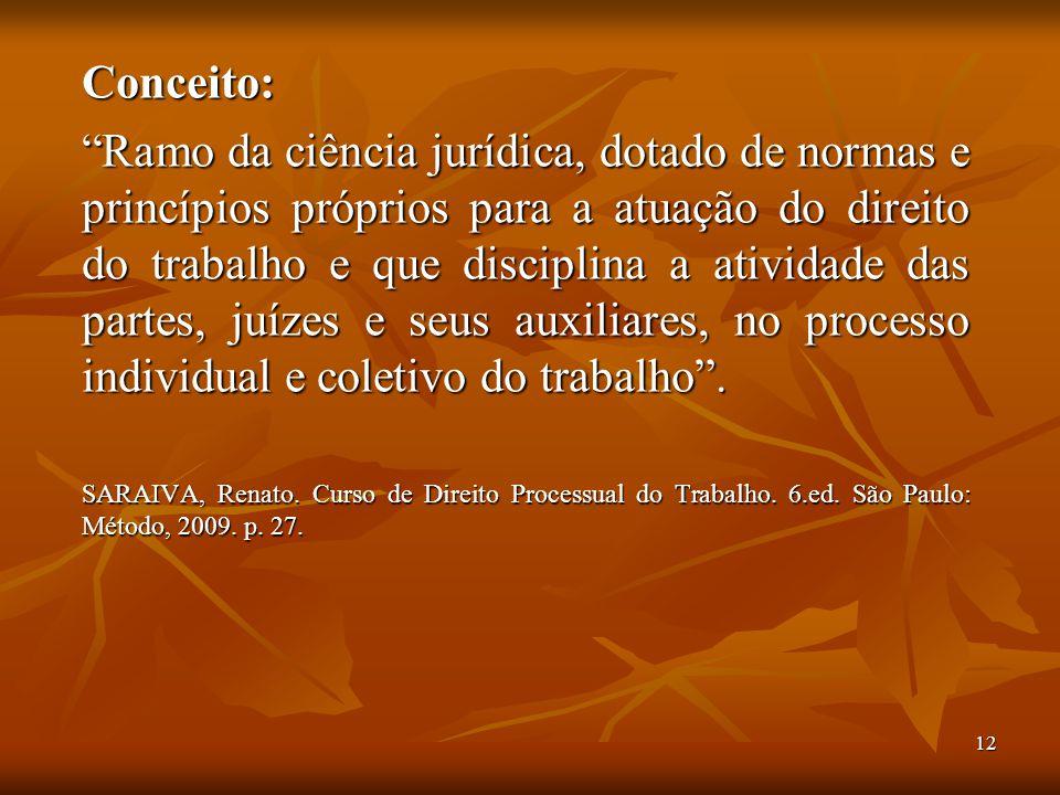 """12 Conceito: """"Ramo da ciência jurídica, dotado de normas e princípios próprios para a atuação do direito do trabalho e que disciplina a atividade das"""