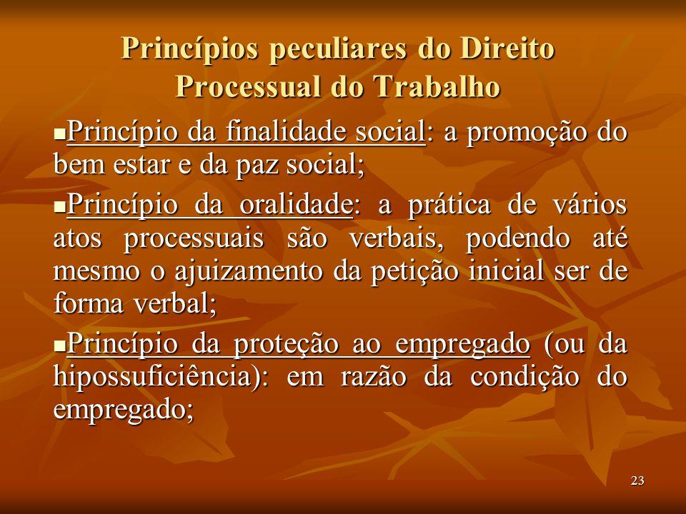 23 Princípios peculiares do Direito Processual do Trabalho Princípio da finalidade social: a promoção do bem estar e da paz social; Princípio da final