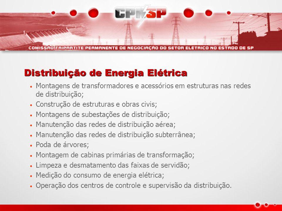 Distribuição de Energia Elétrica Montagens de transformadores e acessórios em estruturas nas redes de distribuição; Construção de estruturas e obras c