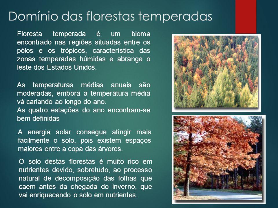 Domínio das florestas temperadas Floresta temperada é um bioma encontrado nas regiões situadas entre os pólos e os trópicos, característica das zonas