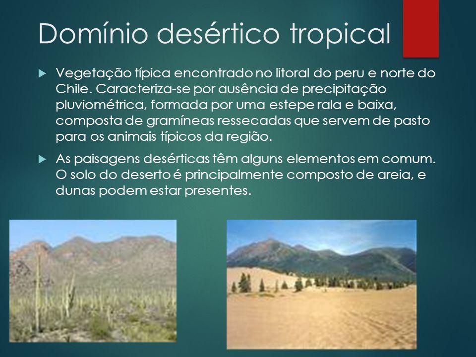 Domínio desértico tropical  Vegetação típica encontrado no litoral do peru e norte do Chile. Caracteriza-se por ausência de precipitação pluviométric