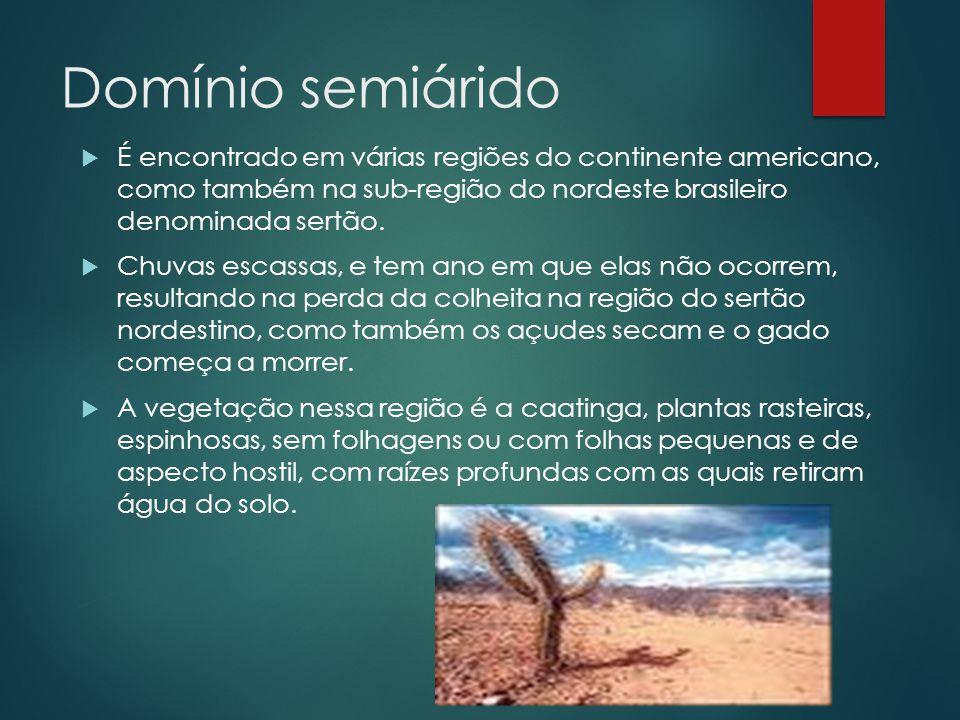 Domínio semiárido  É encontrado em várias regiões do continente americano, como também na sub-região do nordeste brasileiro denominada sertão.  Chuv