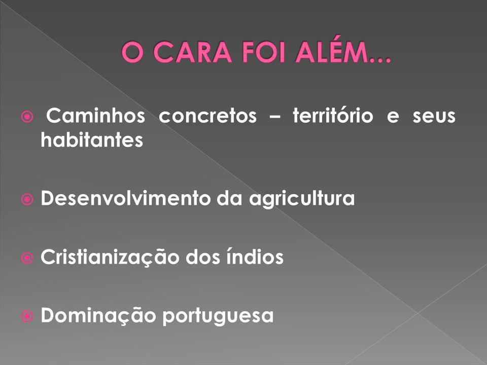  Caminhos concretos – território e seus habitantes  Desenvolvimento da agricultura  Cristianização dos índios  Dominação portuguesa