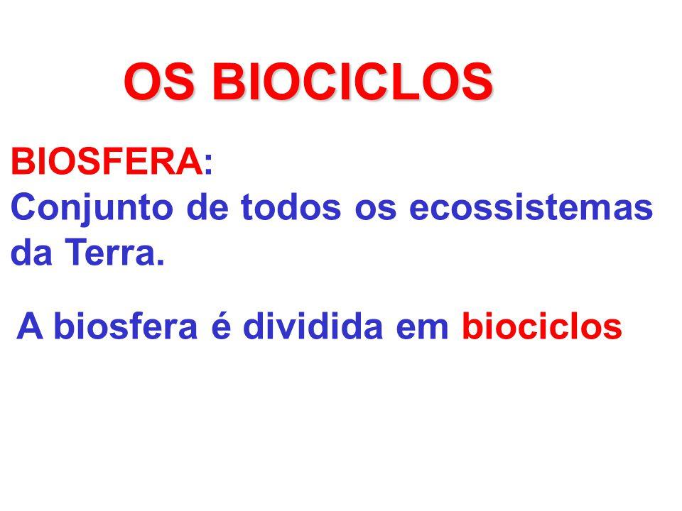 OS BIOCICLOS BIOSFERA: Conjunto de todos os ecossistemas da Terra. A biosfera é dividida em biociclos
