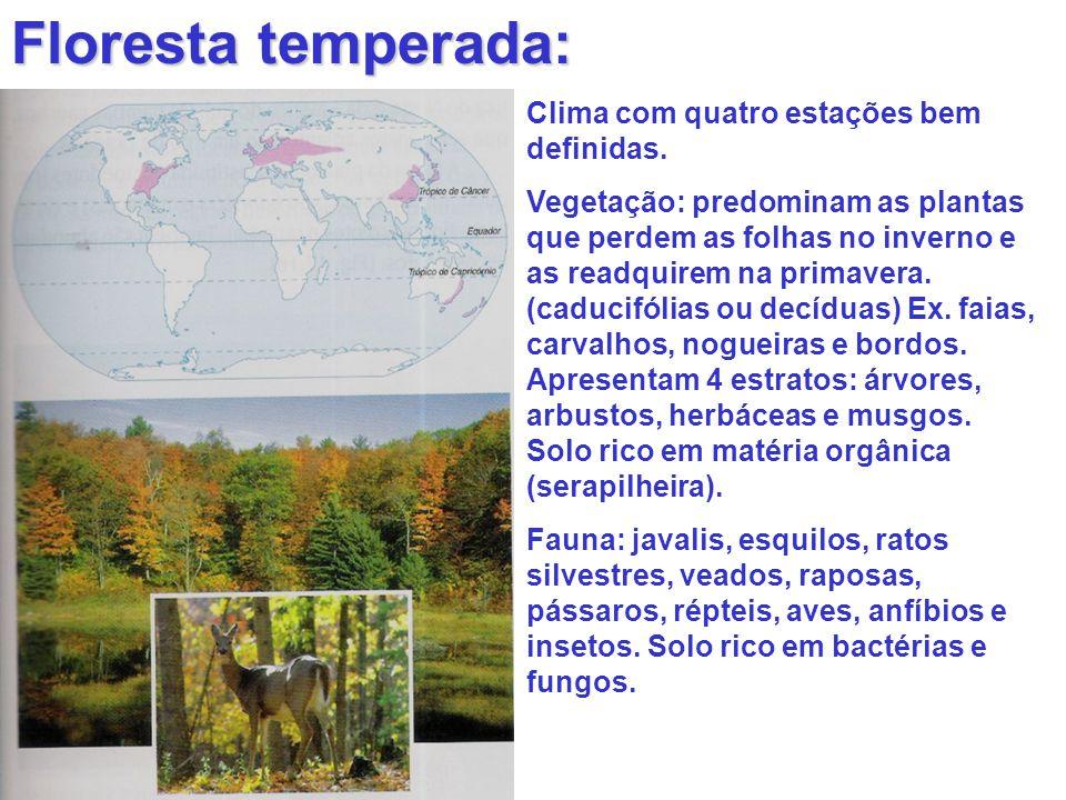 Floresta temperada: Clima com quatro estações bem definidas. Vegetação: predominam as plantas que perdem as folhas no inverno e as readquirem na prima