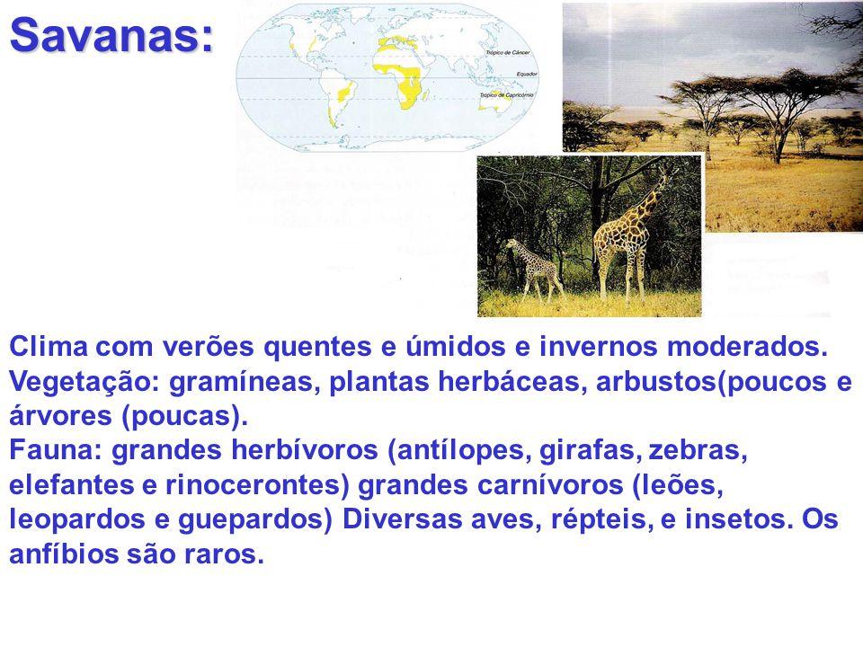 Savanas: Clima com verões quentes e úmidos e invernos moderados. Vegetação: gramíneas, plantas herbáceas, arbustos(poucos e árvores (poucas). Fauna: g