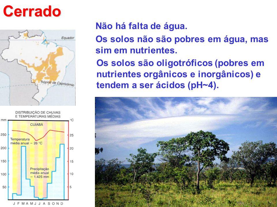 Cerrado Não há falta de água. Os solos não são pobres em água, mas sim em nutrientes. Os solos são oligotróficos (pobres em nutrientes orgânicos e ino
