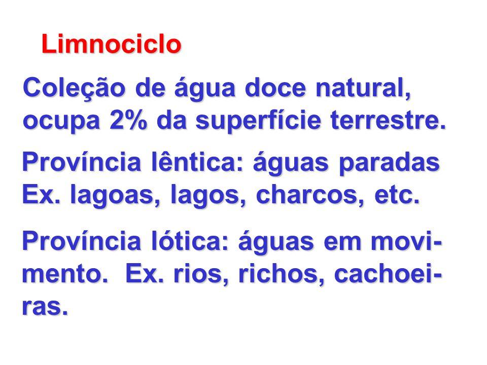 Limnociclo Coleção de água doce natural, ocupa 2% da superfície terrestre. Província lêntica: águas paradas Ex. lagoas, lagos, charcos, etc. Província