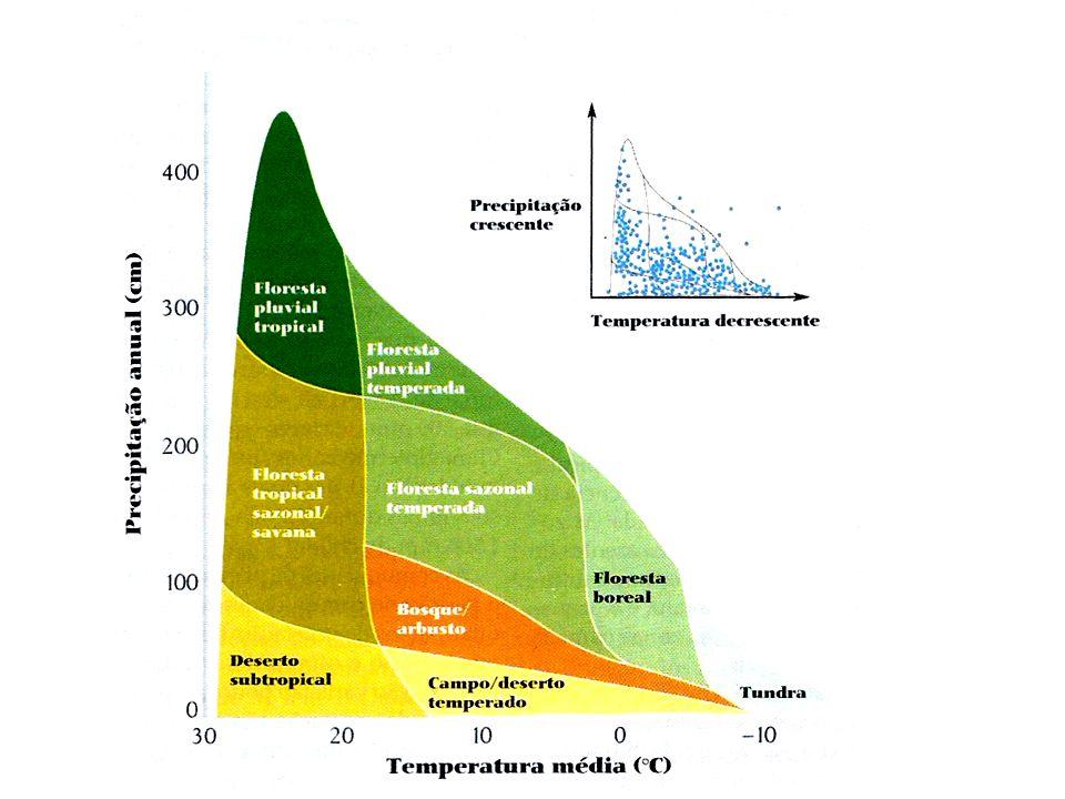 Temperatura: varia de acordo com as estações e com a latitude.
