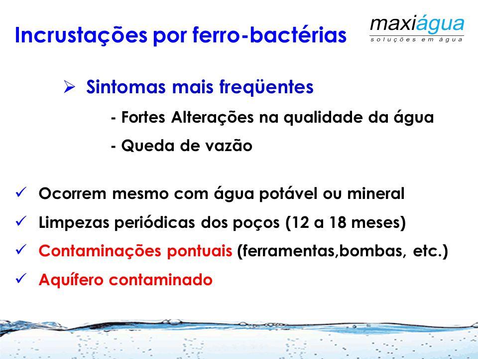Início dos Trabalhos Durante Na conclusão Incrustações por Ferro e carbonatos Martins Netto, J.P.G. 2009 ABES