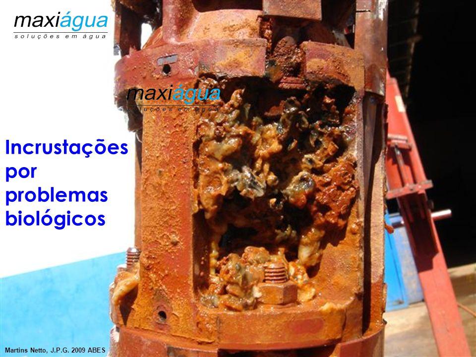 """Presença de ferro bactérias e outras """"bactérias complexas""""  Diagnóstico - Alterações visuais na água - Através de análises de águas específicas Medid"""