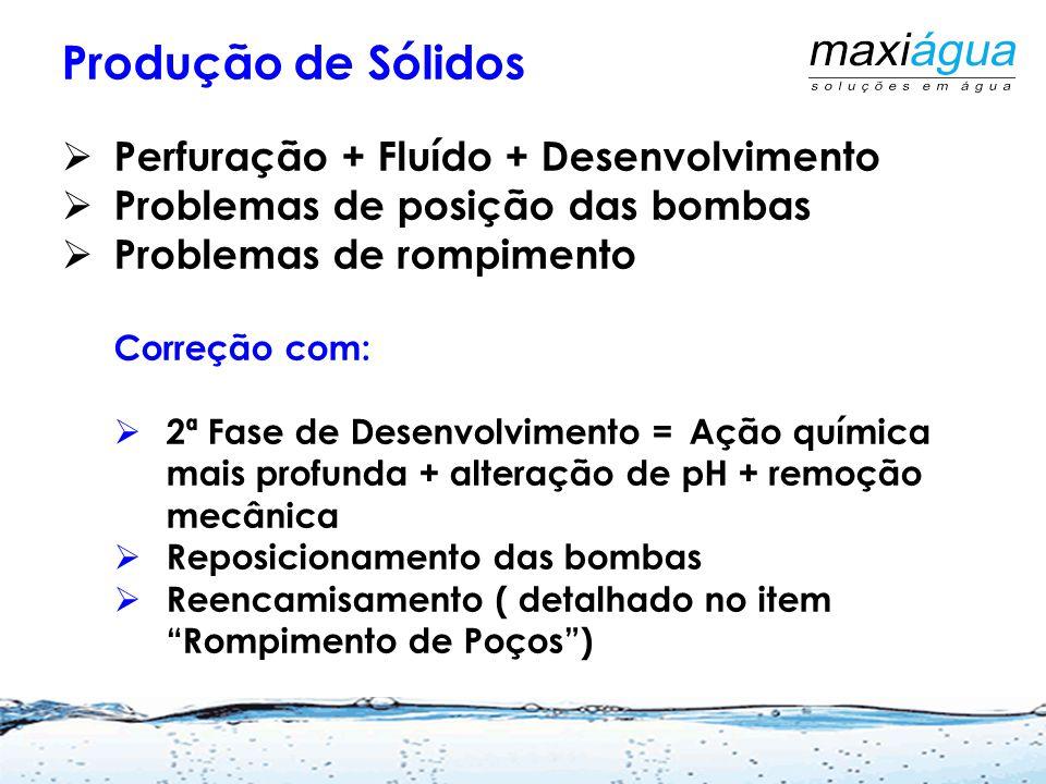 Incrustações por problemas biológicos Martins Netto, J.P.G. 2009 ABES