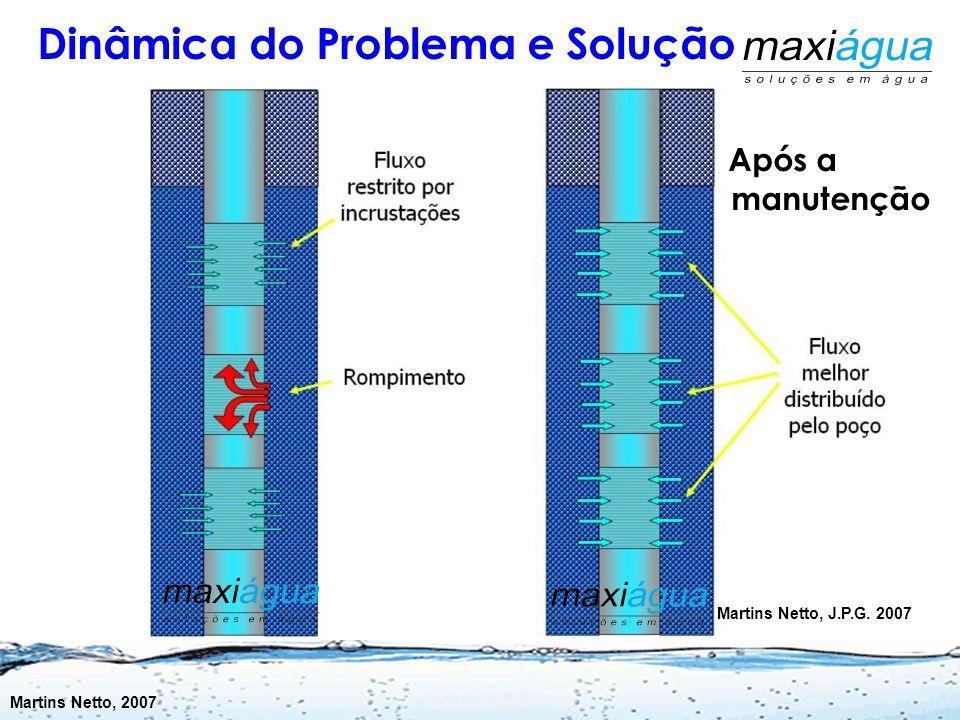  Falta de Manutenção Preventiva  Águas agressivas  Tubos Furados  Posicionamento ou Reposicionamento de bombas em posições inadequadas (aprisionam