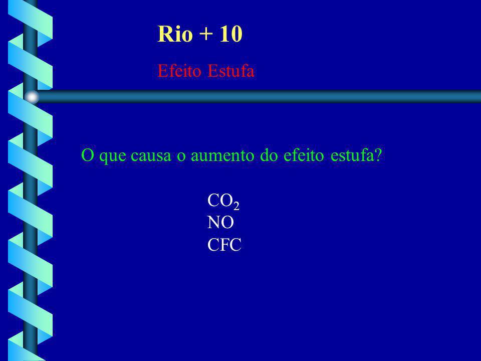 Rio + 10 Efeito Estufa O que causa o aumento do efeito estufa? CO 2 NO CFC