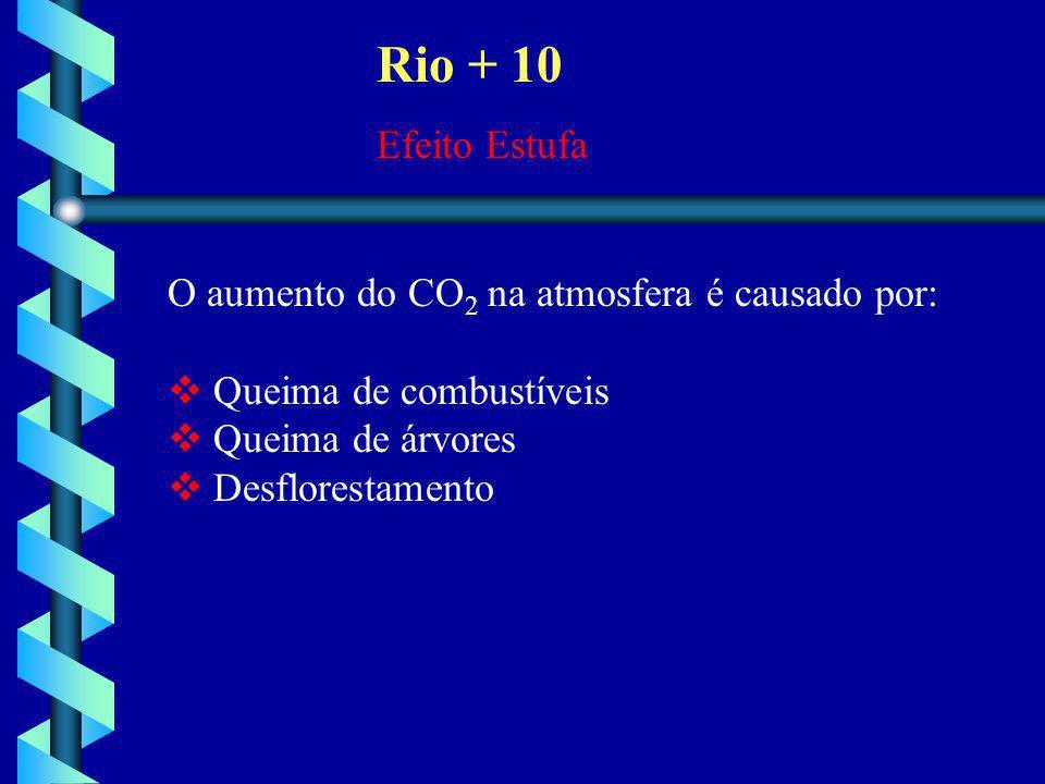 Rio + 10 Efeito Estufa O aumento do CO 2 na atmosfera é causado por:  Queima de combustíveis  Queima de árvores  Desflorestamento