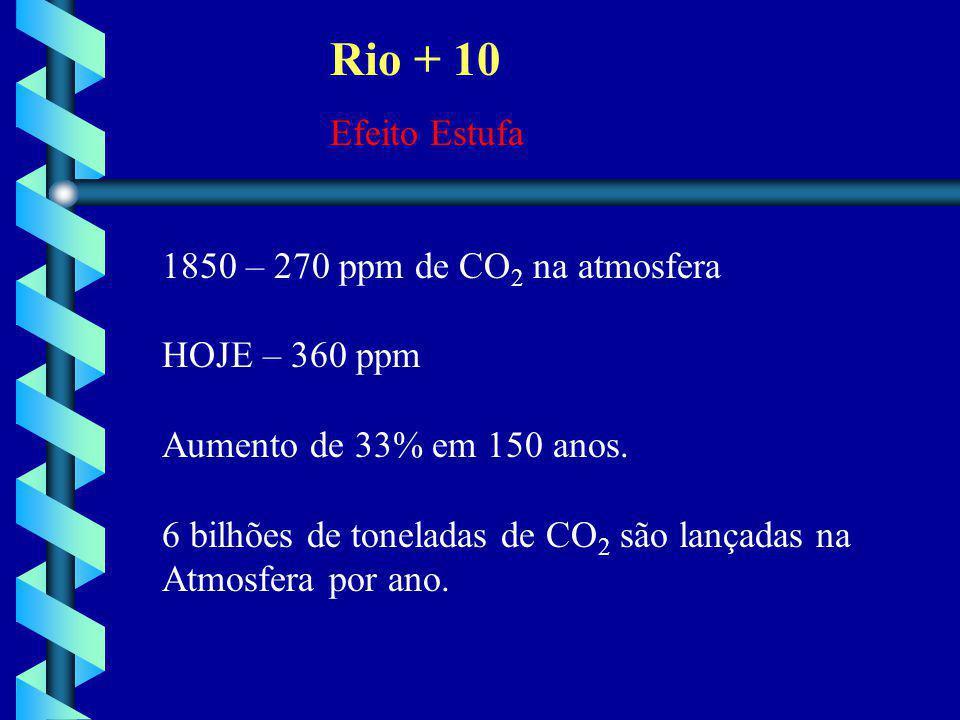 Rio + 10 Efeito Estufa 1850 – 270 ppm de CO 2 na atmosfera HOJE – 360 ppm Aumento de 33% em 150 anos. 6 bilhões de toneladas de CO 2 são lançadas na A