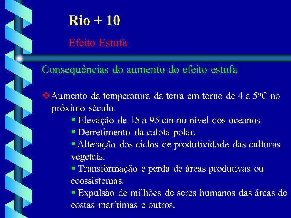 Rio + 10 Efeito Estufa Consequências do aumento do efeito estufa  Aumento da temperatura da terra em torno de 4 a 5 o C no próximo século.  Elevação