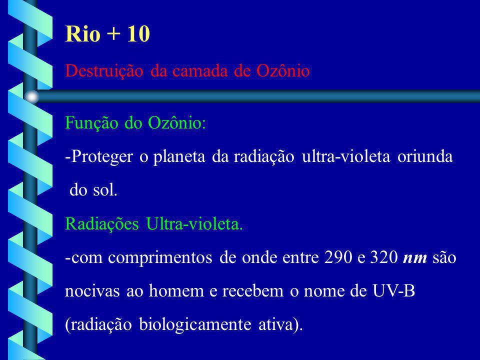 Rio + 10 Destruição da camada de Ozônio Função do Ozônio: -Proteger o planeta da radiação ultra-violeta oriunda do sol. Radiações Ultra-violeta. -com